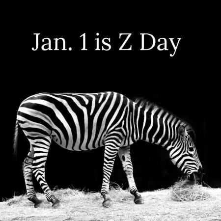 z-day-zebra